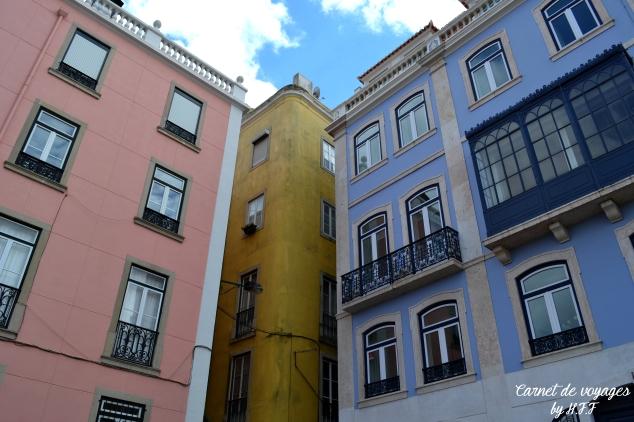 Rato Lisboa HFF